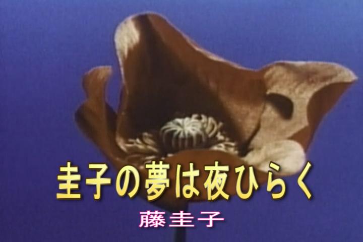 圭子の夢は夜ひらく