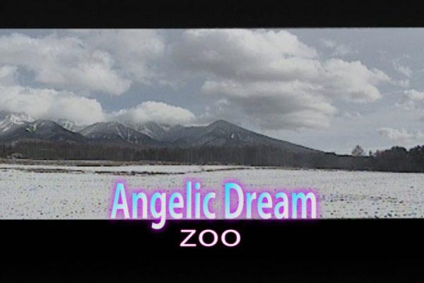 Angelic Dream