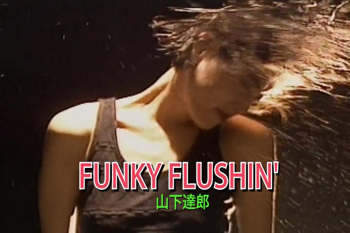 FUNKY FLUSHIN'
