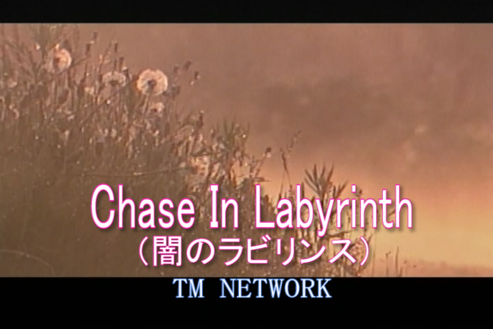 Chase In Labyrinth(闇のラビリンス)