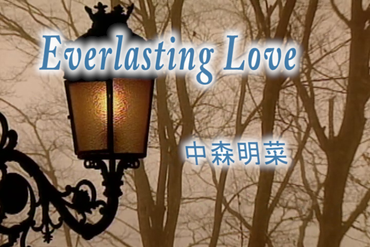 Read more about the article Everlasting Love