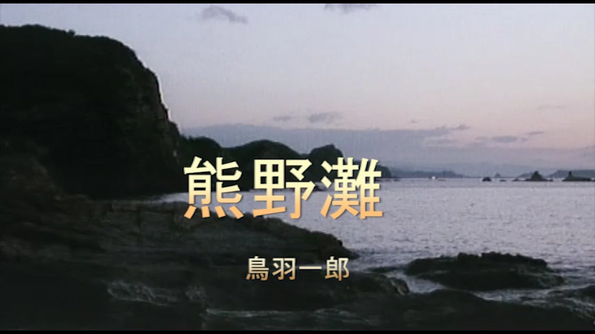 Read more about the article 熊野灘