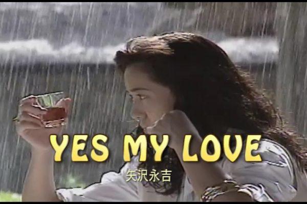 YES MY LOVE