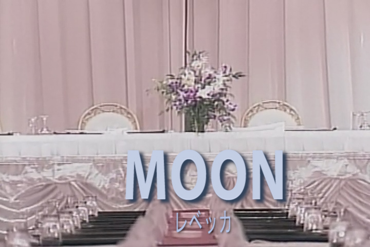 Read more about the article MOON