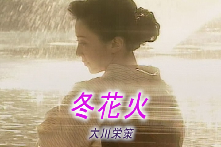 Read more about the article 冬花火