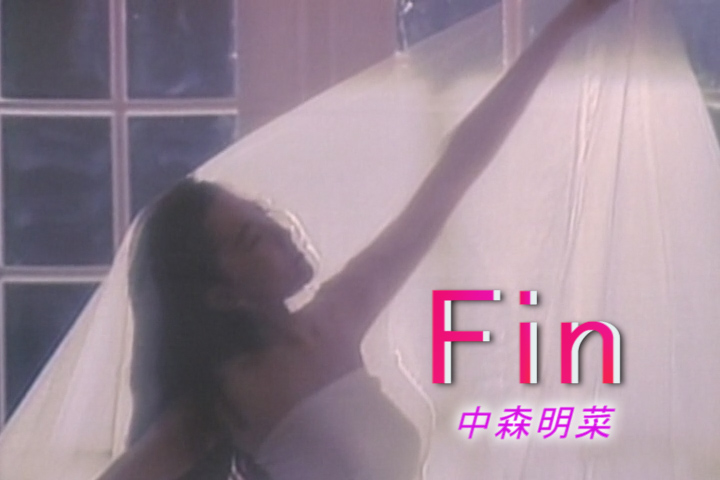 Read more about the article Fin