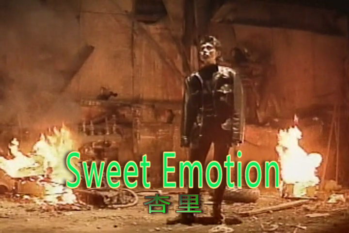 Read more about the article Sweet Emotion