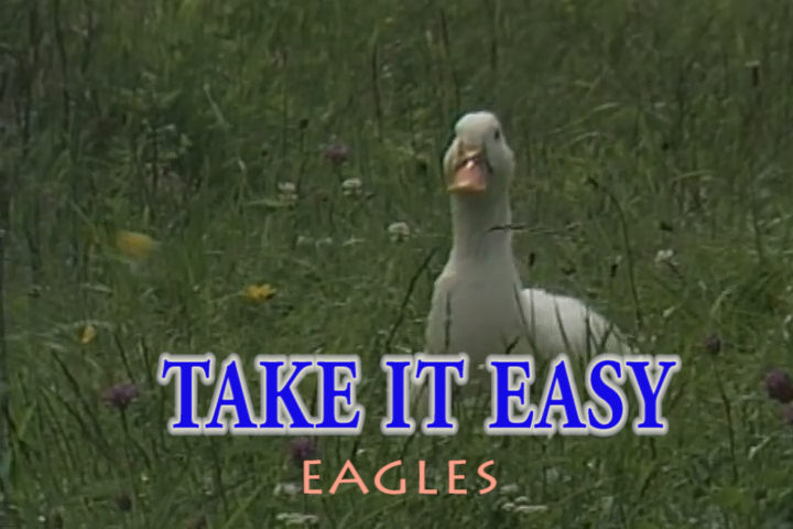 Read more about the article TAKE IT EASY