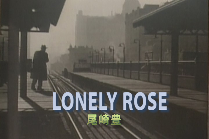 Read more about the article LONELY ROSE
