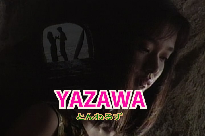 Read more about the article YAZAWA