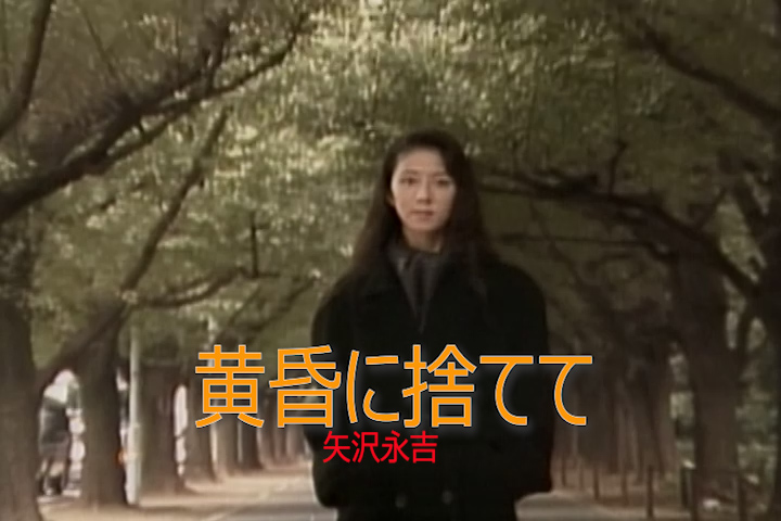 Read more about the article 黄昏に捨てて