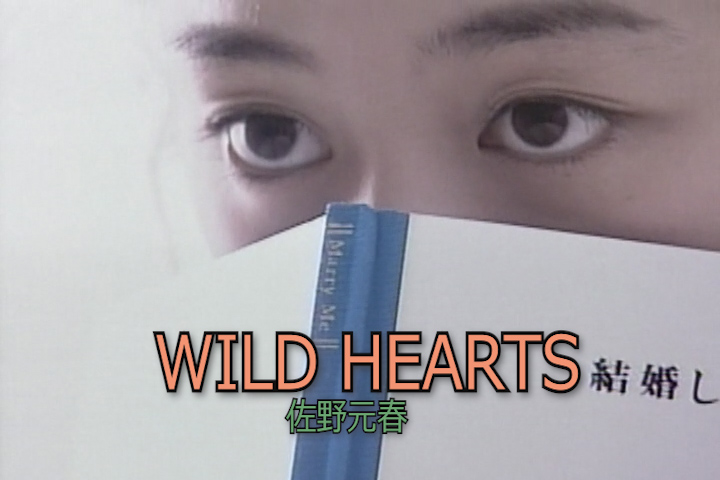 Read more about the article WILD HEARTS
