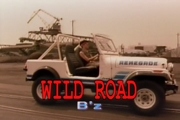 Read more about the article WILD ROAD