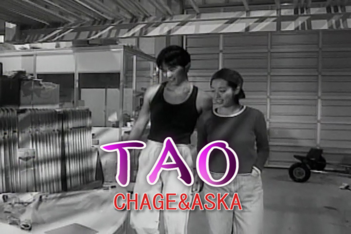 Read more about the article TAO
