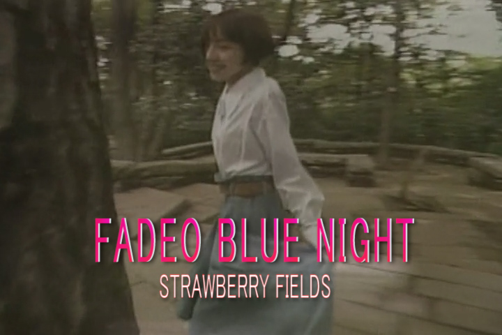 Read more about the article FADED BLUE NIGHT