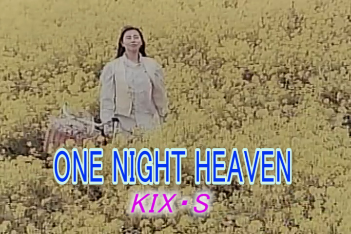ONE NIGHT HEAVEN