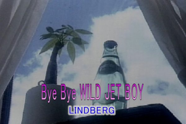 Bye Bye WILD JET BOY