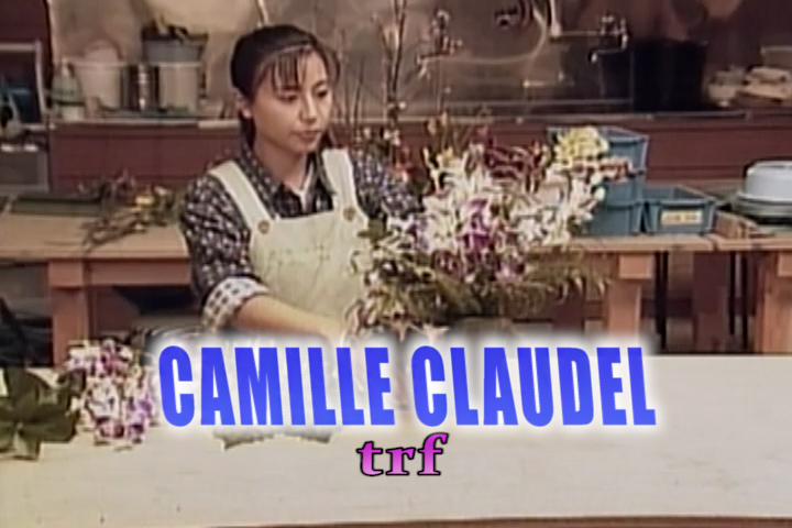 Read more about the article CAMILLE CLAUDEL